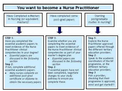 Professional nursing papers